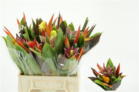 Bouquet Af